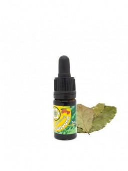 Guayusa Extract - 5 ml & 10 ml