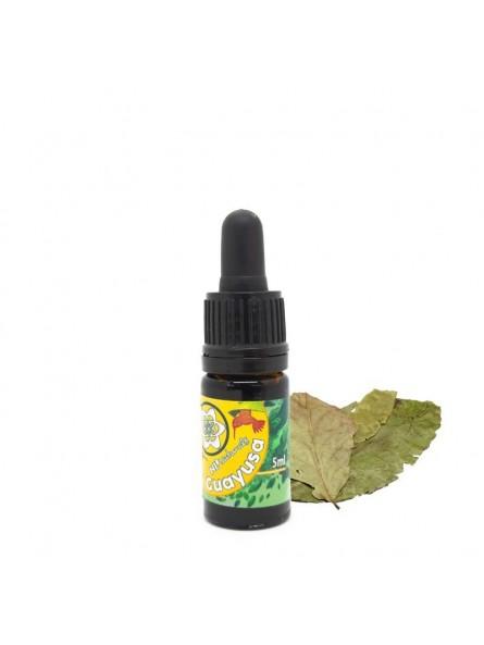Guayusa Extract - 5 ml & 10 ml